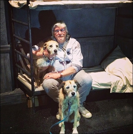 Martin sporting his lion hoodie and showing our Sandys: Sunny & Macy some love during tech.