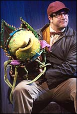 Joey Fatone in <I>Little Shop of Horrors</I>