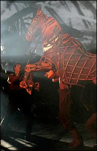 <i>War Horse</i>'s